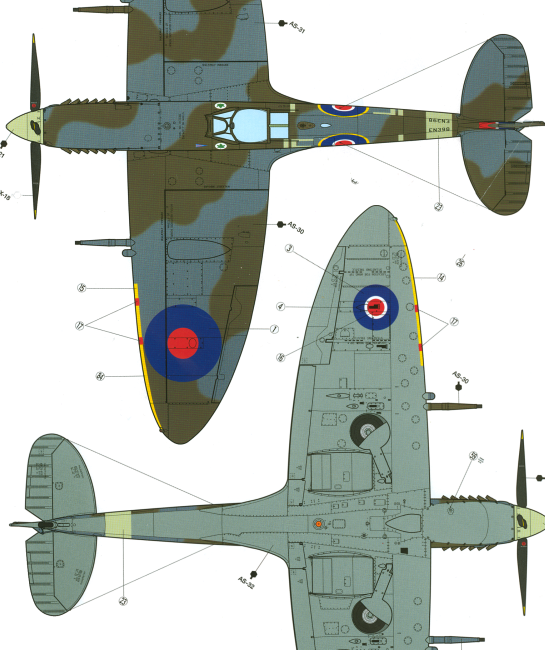 Spitfire Order Rhythm And Pattern